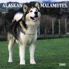 Alaskan Malamute 2005 Wall Calendar