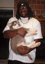 Hudson's Malamutes - Tennessee Titans Chris Henry  with A Hudsons puppy.
